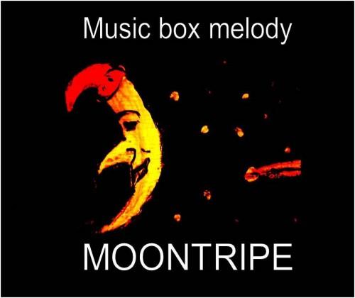 melody 1.jpg
